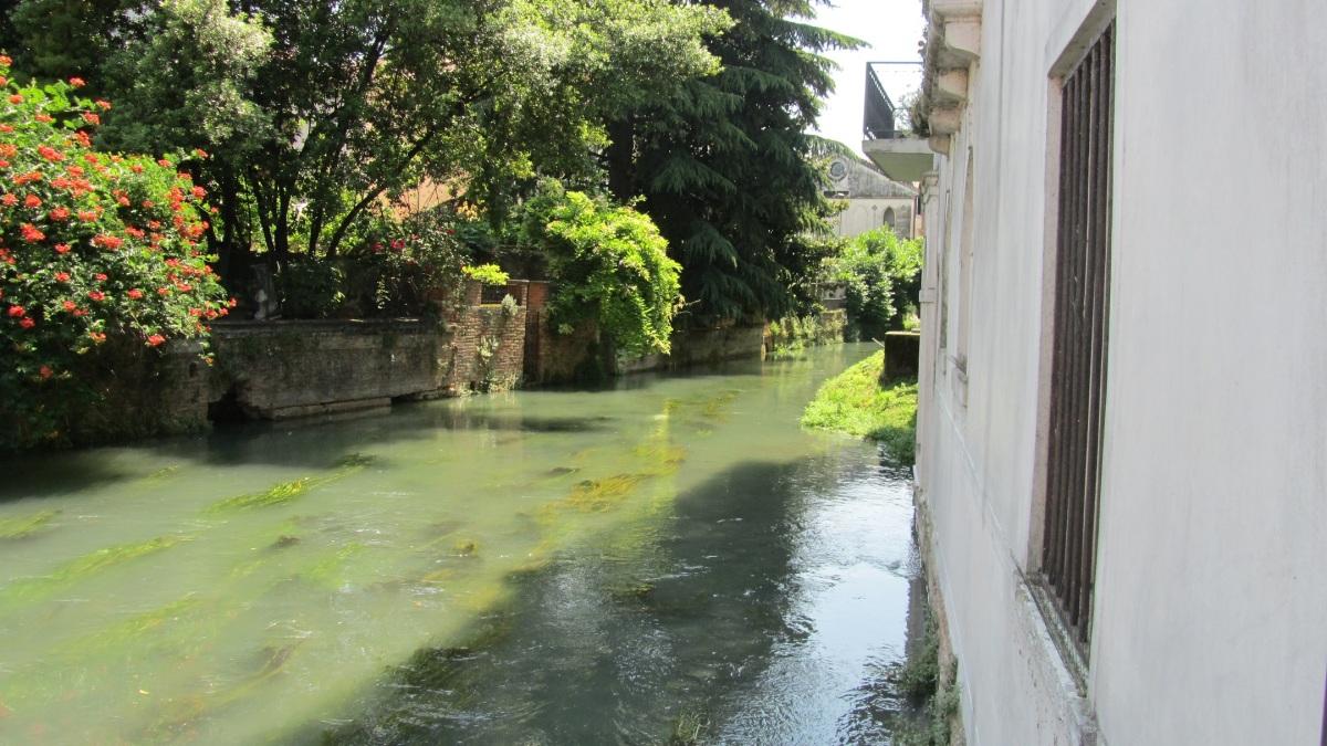 Venedig 40