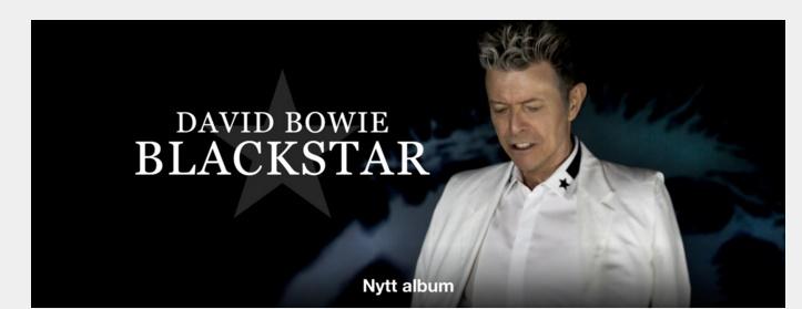 David Bowie apple.jpg