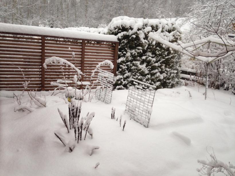 snow 7 mars1.JPG