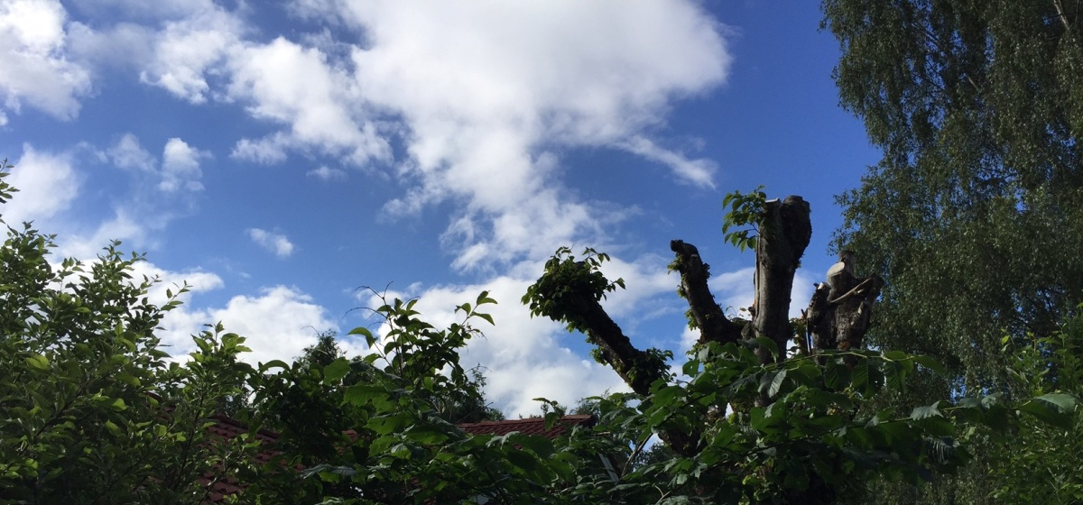 4 juli moln.jpg